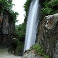 Photos: 初夏の綿ヶ滝