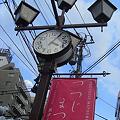 Photos: 根津神社ツツジ00