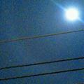 写真: 2011/03/18 月暈