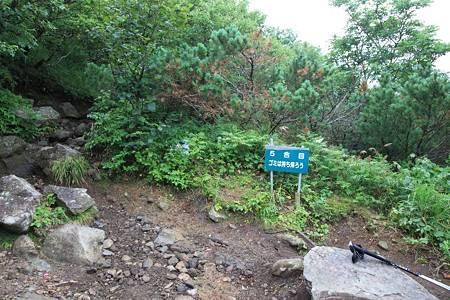 利尻岳-20100814-065118