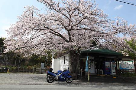 20110410富戸駅