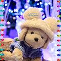 My Snow White II ・・・ 2010 Christmas of Tokyo IIIXVIII
