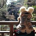Photos: せりかぁ~まったり~