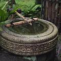 写真: 三渓園・手水鉢