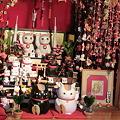 Photos: 今戸神社と夏目友人帳
